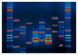 DNA_micahb37_Flickr